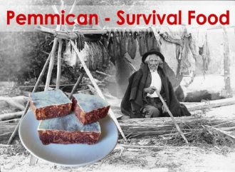 Recipe For Pemmican