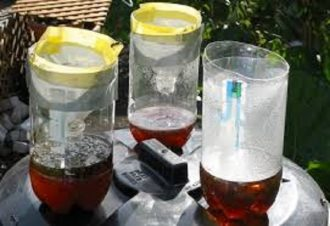 The Ultimate Homemade Mosquito Catcher