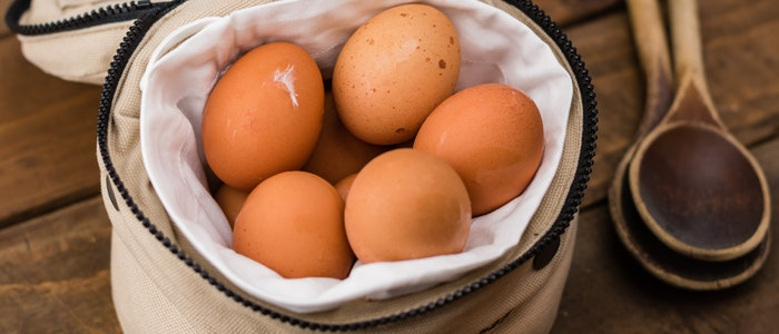 how-to-store-eggs-long-term
